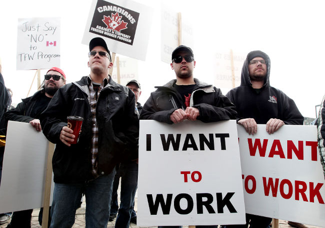 Conference Board of Canada – No Proof for Most Foreign Workers Hired