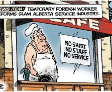 Changes in Temporary foreign worker program are disturbing: McGowan