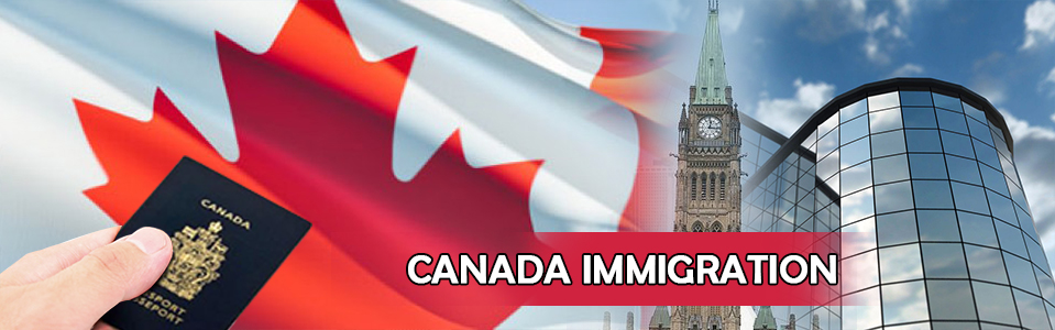 Why are Canadian Immigrants surrendering their Permanent Resident Status?