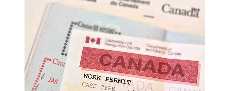 Temporary work permit in canada archives canada us australia uk how to apply for work visa in canada thecheapjerseys Choice Image
