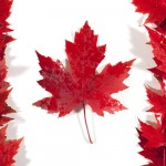 There are different Categories of Visas for Canada, which one is right for you