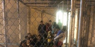 Detained Immigrants in USA are made to live in a pitiable conditions- No food, No permission to meet lawyer