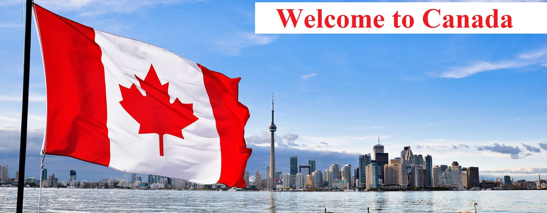 These Professions are always in higher demand in Canada and ease migration process.