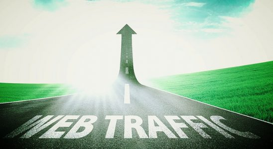 Get real human targeted traffic to your website instantly