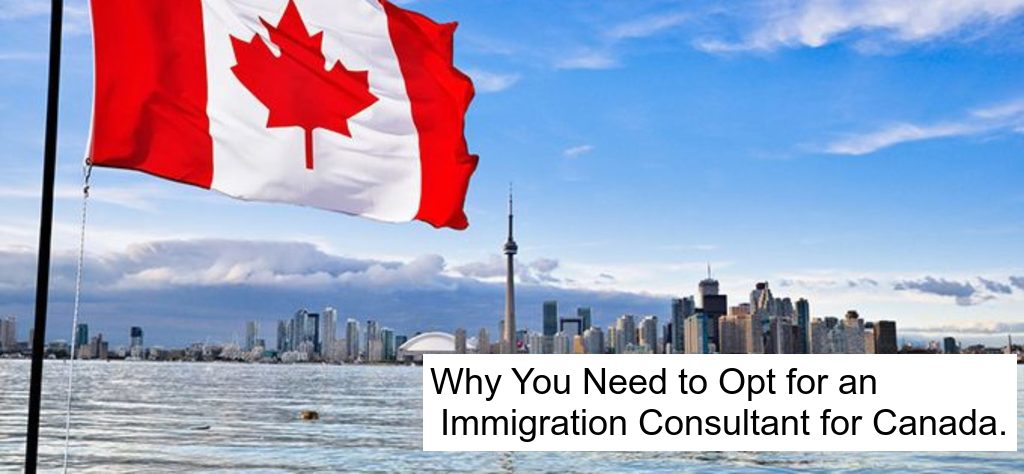 Why You Need to Opt for an Immigration Consultant