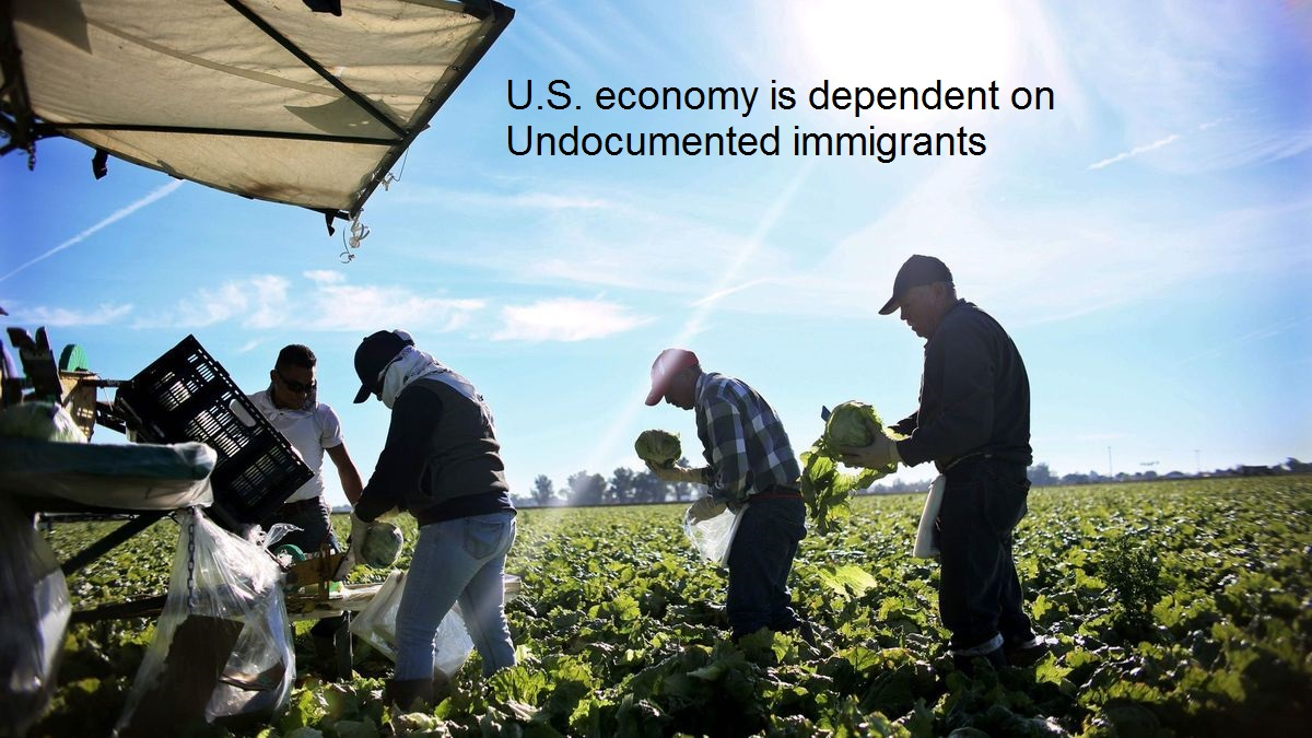 U.S. economy is dependent on Undocumented immigrants..