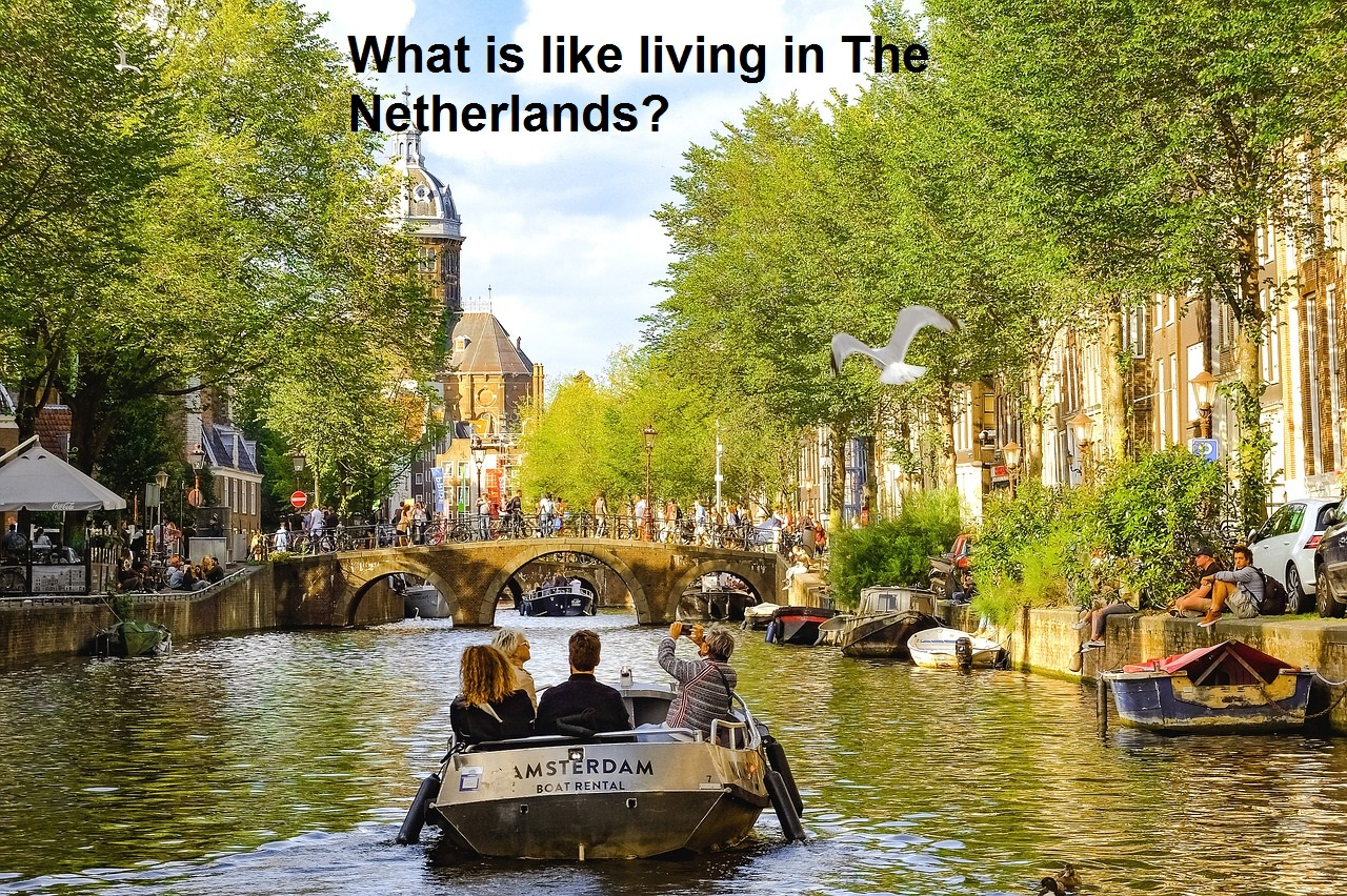 What is like Immigrating and living in The Netherlands?