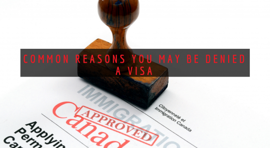 What can you do if your Canadian visa is refused?