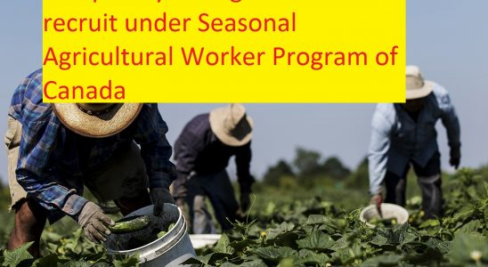 Seasonal Agricultural Worker Program of Canada-Know all About it