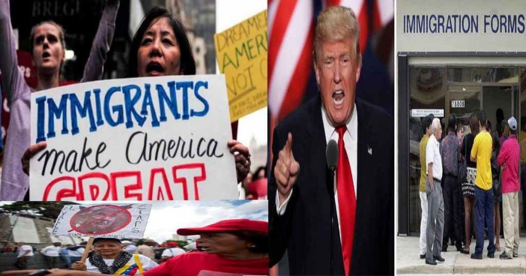 What is the Expected Scenario of Immigration to the US?