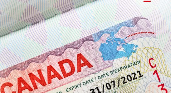 What kind of visa you need to work in Canada? How can you work in get a job in Canada without a work visa?