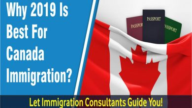 Immigration Consultants and Assistance- Is it a great idea?