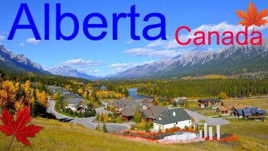 Invitation From Alberta To 294 Express Entry Candidates