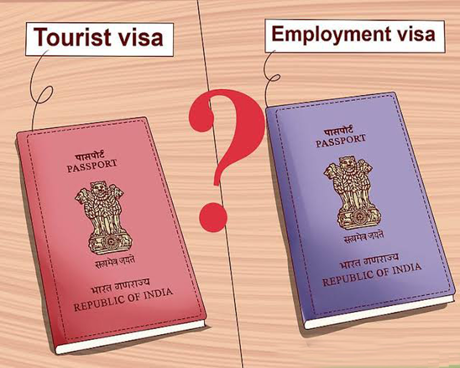 Employment Visa in India