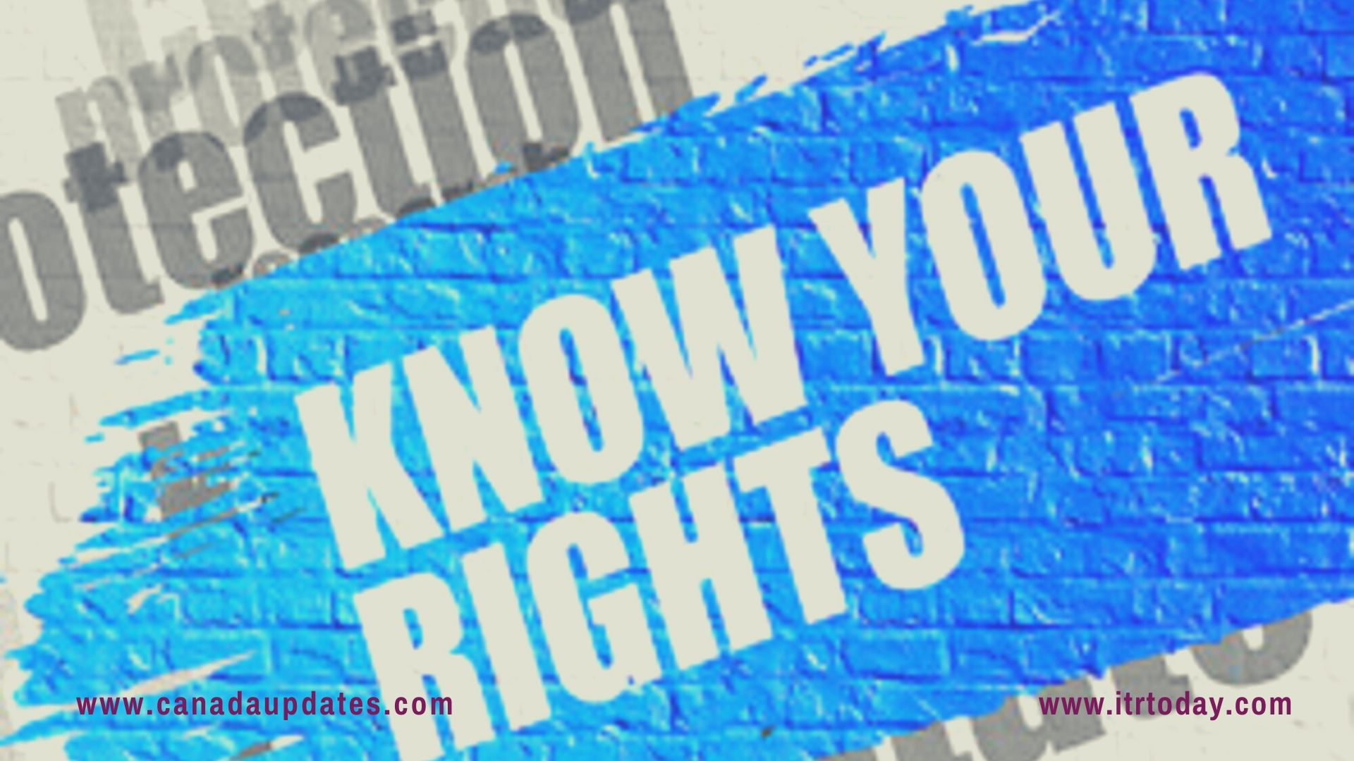Your Rights If Detained by the U.S. ICE 4