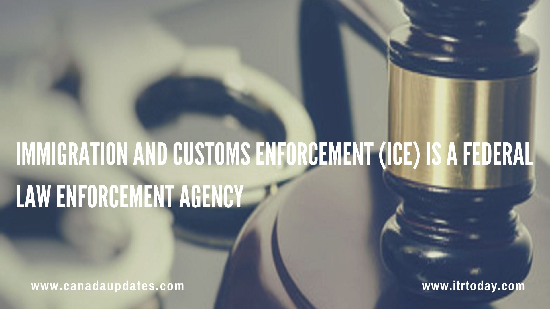 Your Rights If Detained by the U.S. ICE 3