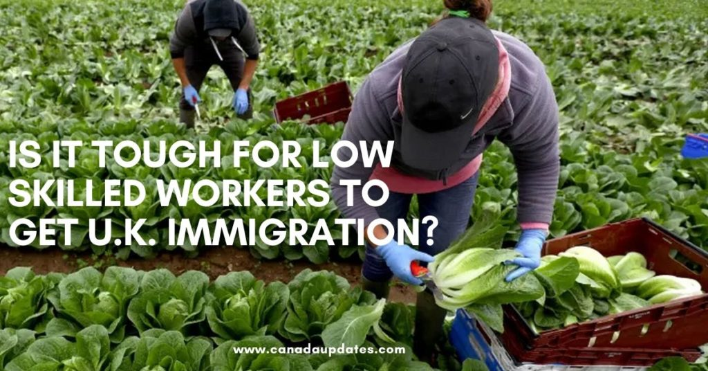 Tough for Low skilled workers to get U.K. immigration 1