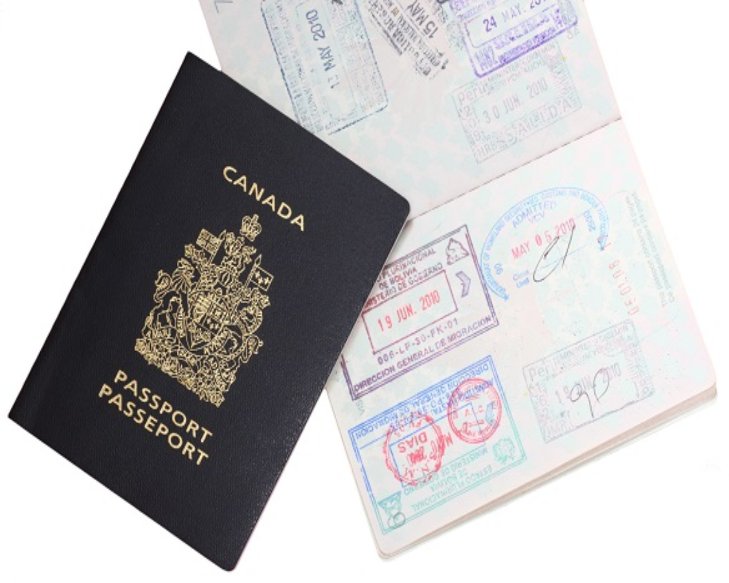 Loss of Canadian Citizenship