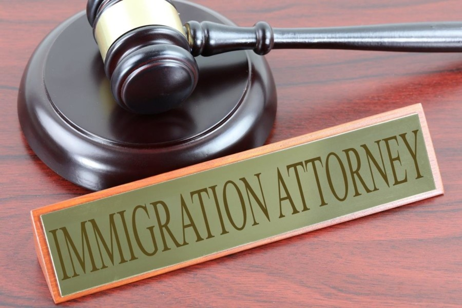 Things You Need to Know To Become an Immigration Lawyer