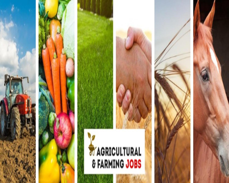 Farm-Based Jobs in Canada